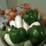 veggiesgard